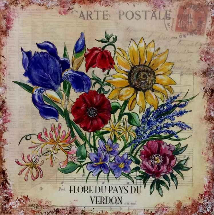 Flore du pays du Verdon