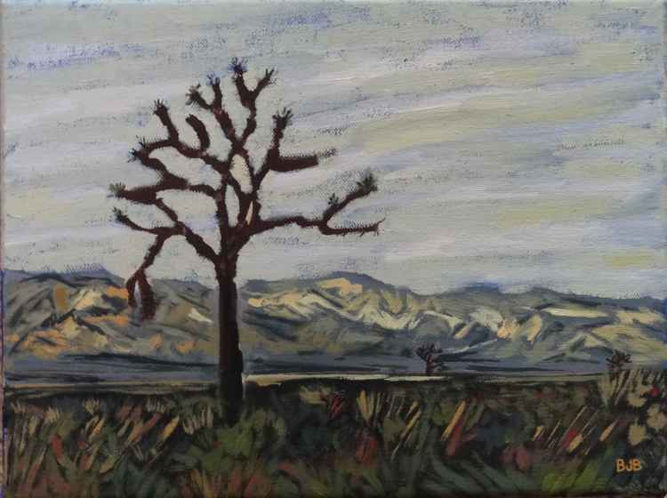 The Joshua Tree Thrives in the Open Grasslands -