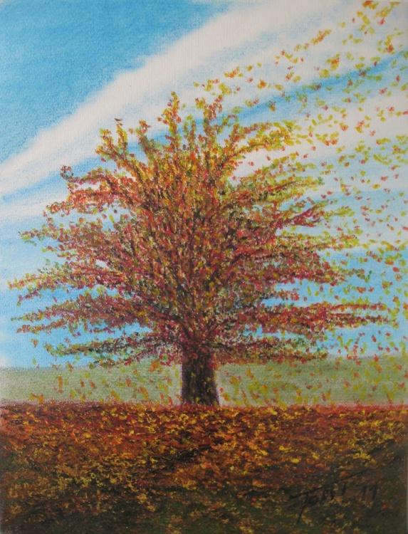 oak_tree_autumn - Image 0