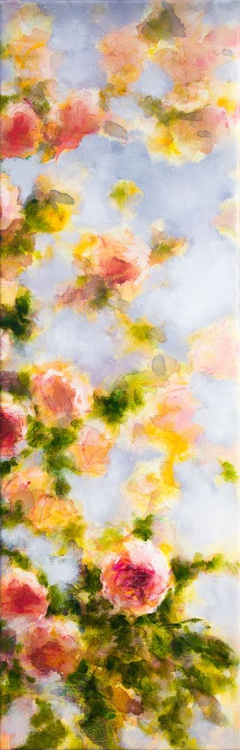 Roses in the summer light - Image 0