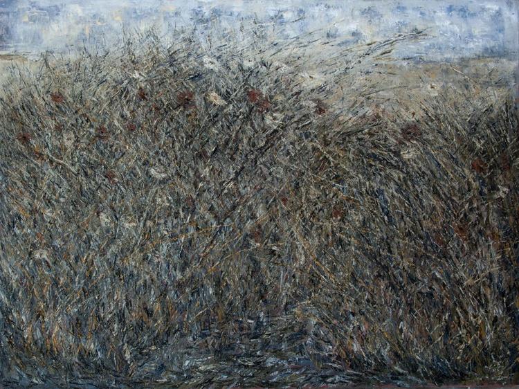 Field series #4 - Image 0