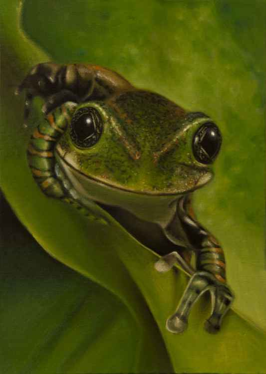 Here's lookin' at you kid! - original oil painting -