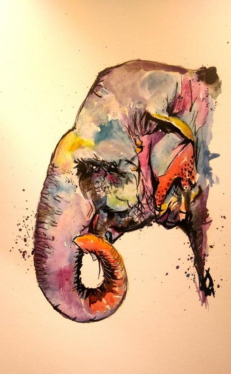 Elephant Profile of Colour - Image 0
