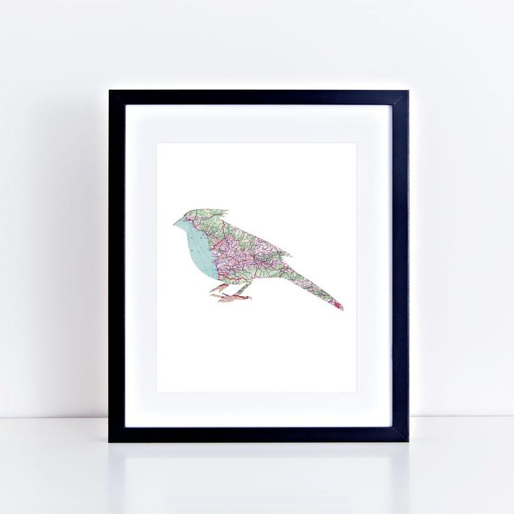 map bird - Image 0