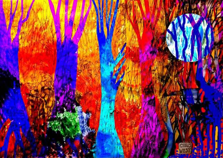 Flame trees  -