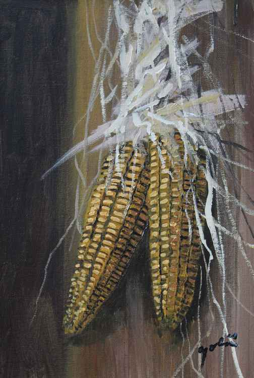 Two old corns -