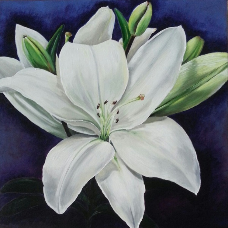 Lilies - Image 0
