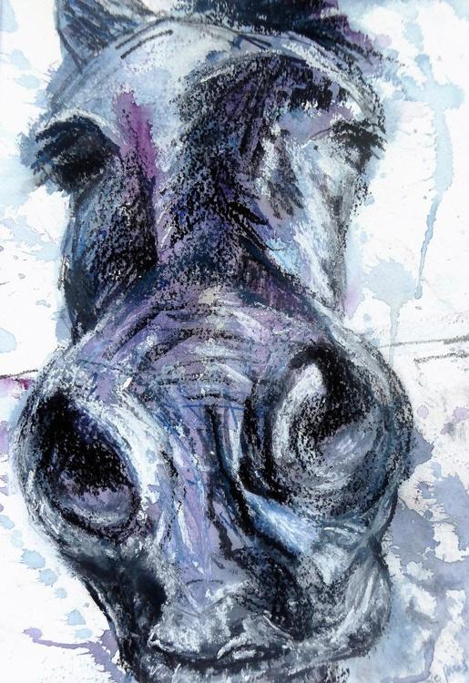 Skye Horse - Image 0