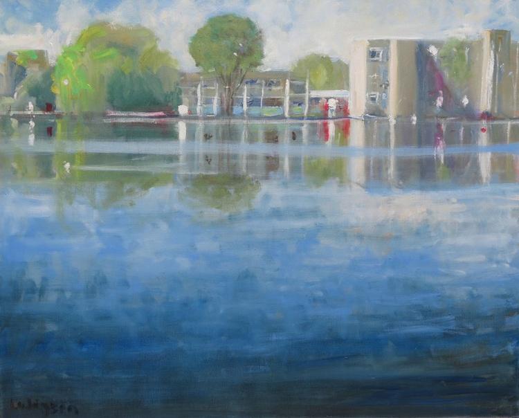 York University Lake - Image 0