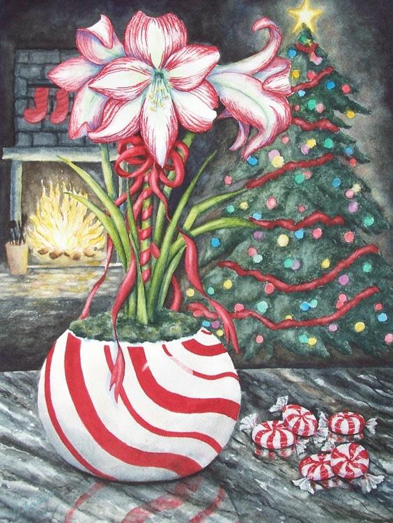 Candy Cane Amaryllis - Image 0