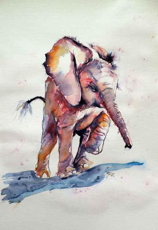 Running elephant baby -