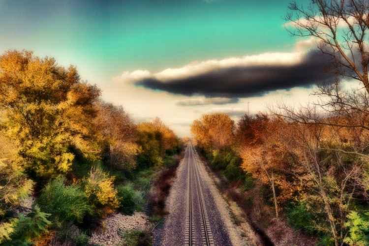 Into an Autumn Dream