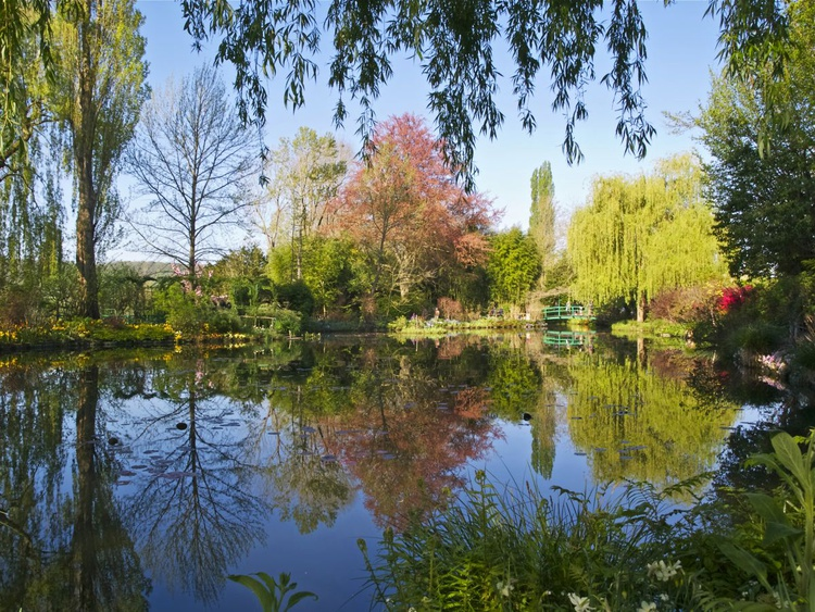 Springtime at Giverny - Image 0