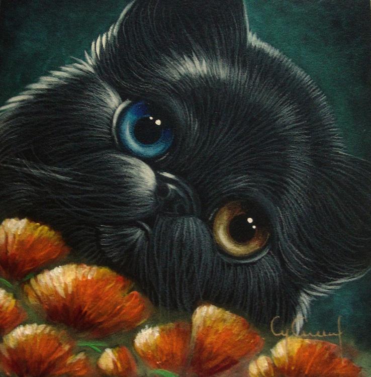 "MINIATURE BLACK PERSIAN CAT with ODD EYES & POPPY FLOWERS 5"" X 5"" - Image 0"