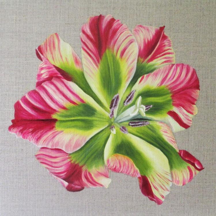 Flaming Spring Green Tulip 2 - Image 0