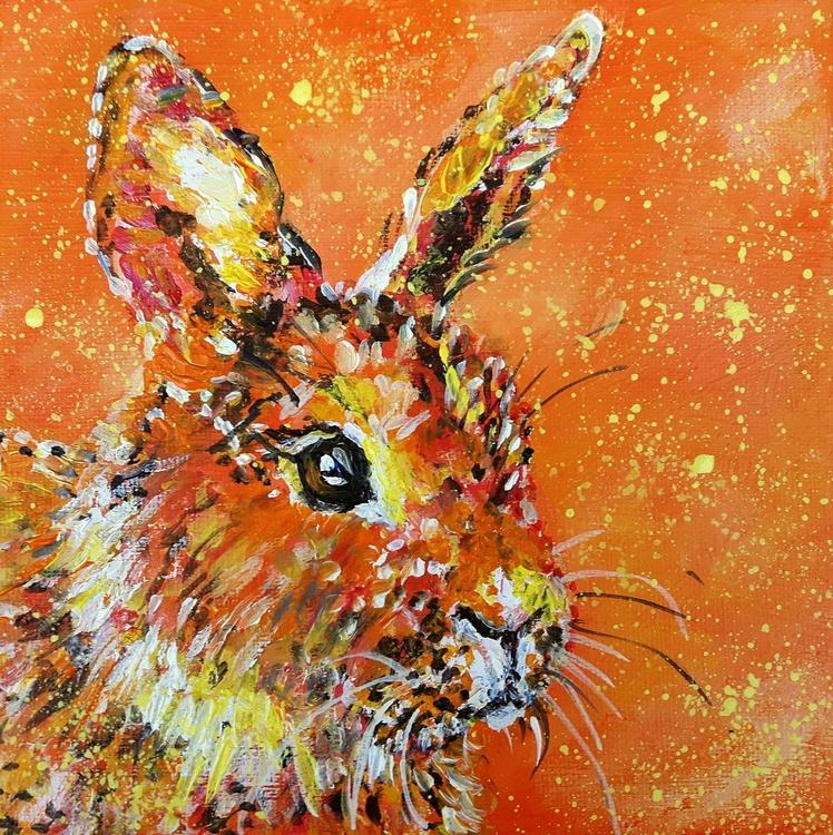 """Sun bunny"" - Image 0"