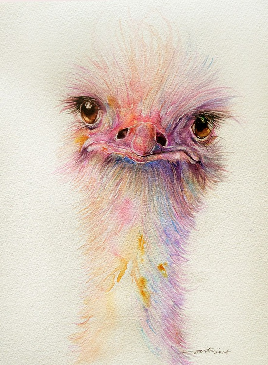 Ozzy the Ostrich - Image 0