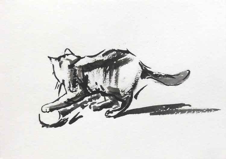 Cat #1 (scatch)