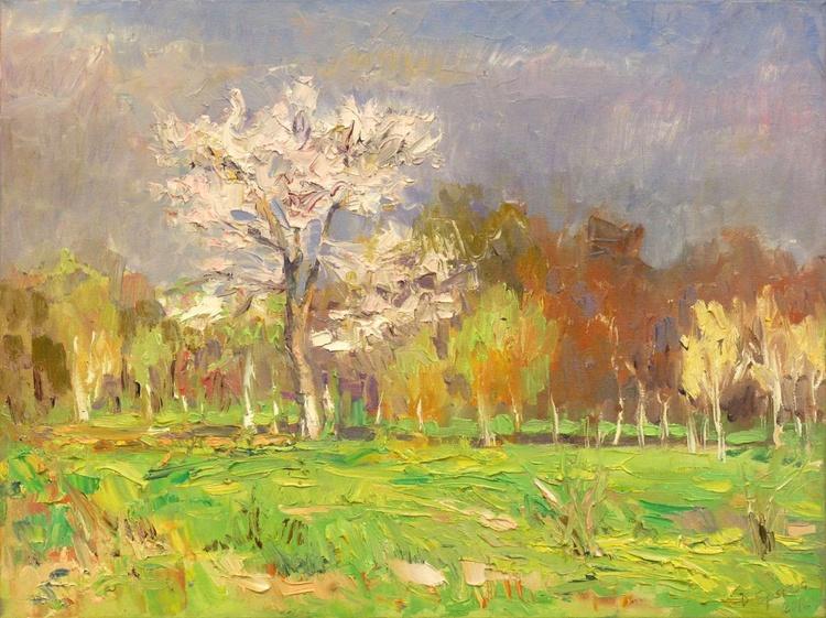 Springtime (60*45) - Image 0