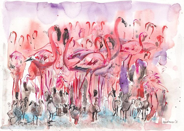 Breeding Flamingoes - Image 0