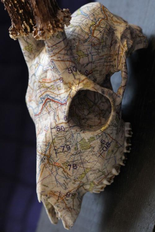 Map - Image 0