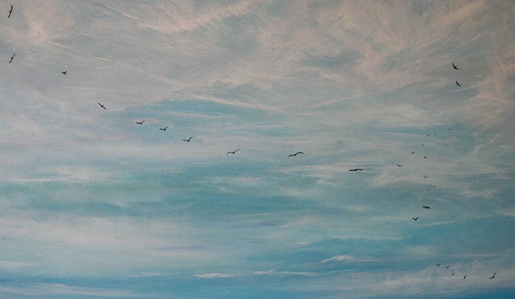 Dawn Migration - Image 0