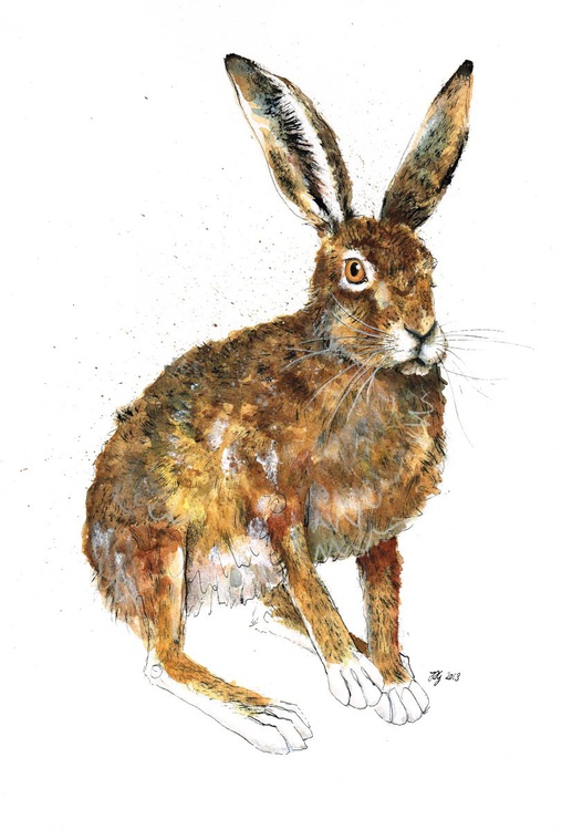'Mr Twitcher' Original Ink and Watercolour Hare Painting - Image 0