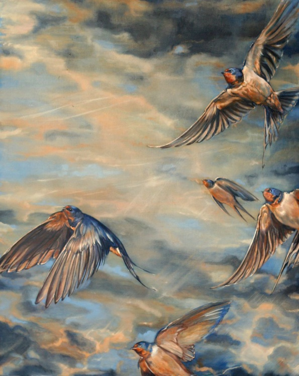 Swallows in a stormy sky - Image 0