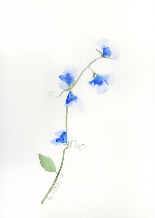 Blue Sweetpeas - Image 0