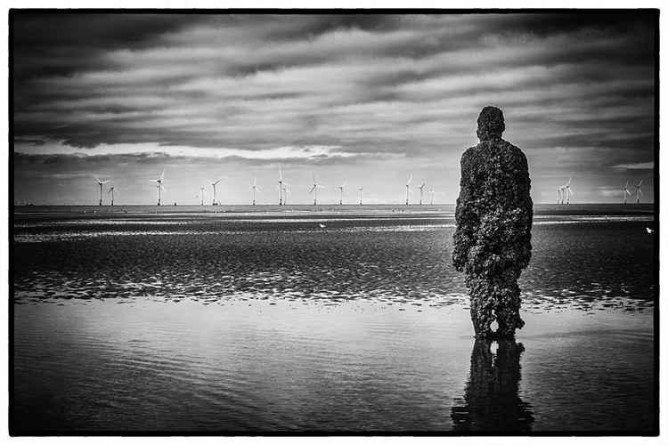Contemplation -