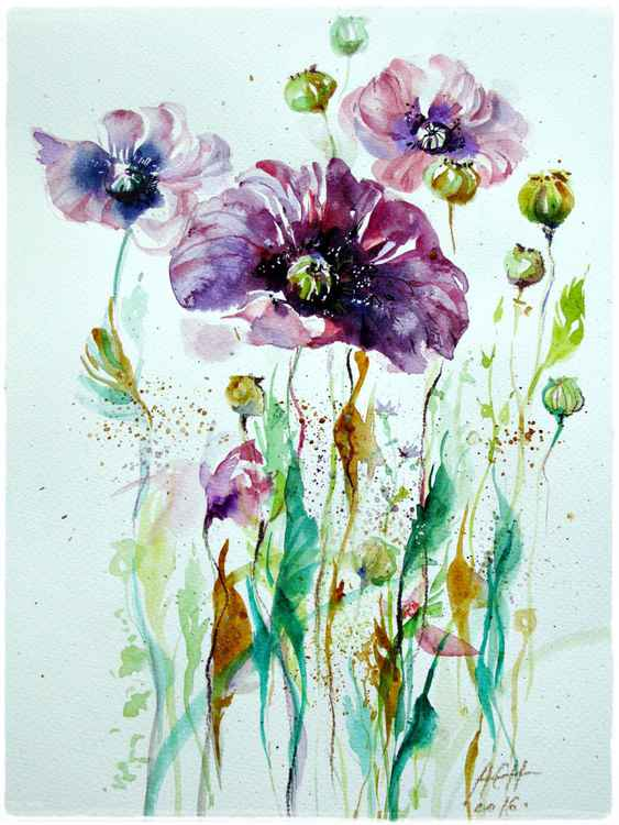 purple poppies watercolour flowers painting