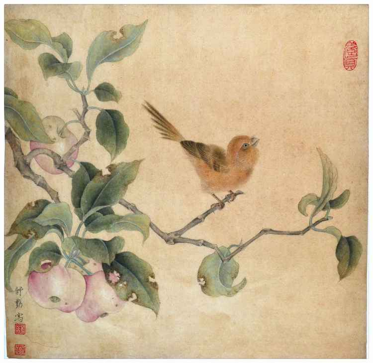 Original Chinese Gongbi Painting - Archaizing-02 Ripe Fruits attracting Birds Original Chinese Gongbi Painting by Qin Shu -
