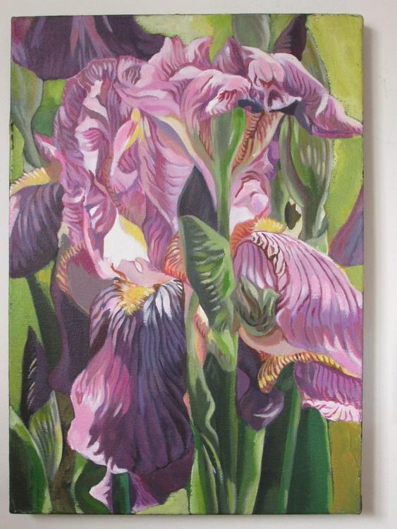 Double iris - Image 0