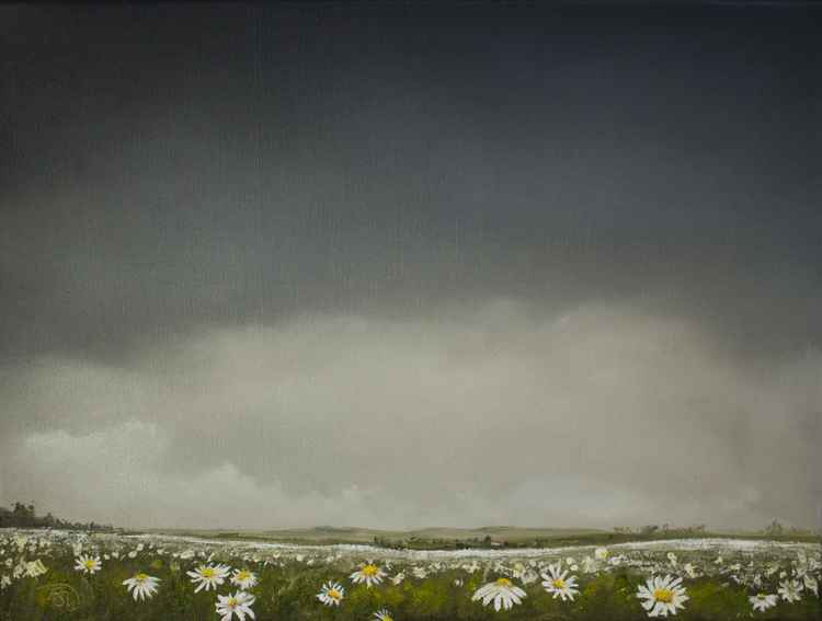 Daisy Meadow -
