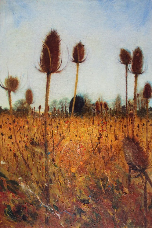 Field of Teasels - Image 0