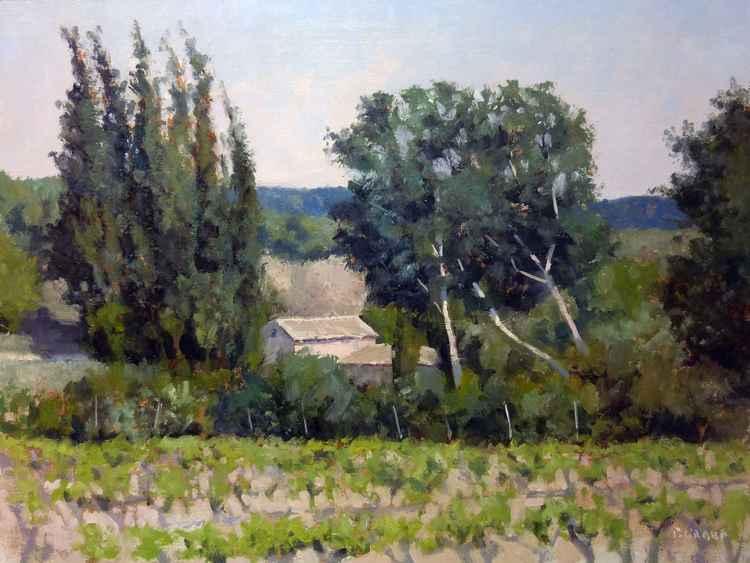 Farm near Ansouis -