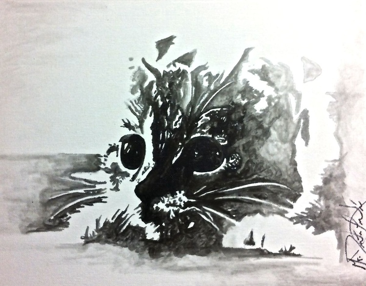 Last of the Kittens  - Image 0