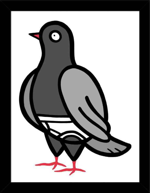 Pigeons In Pants #003X