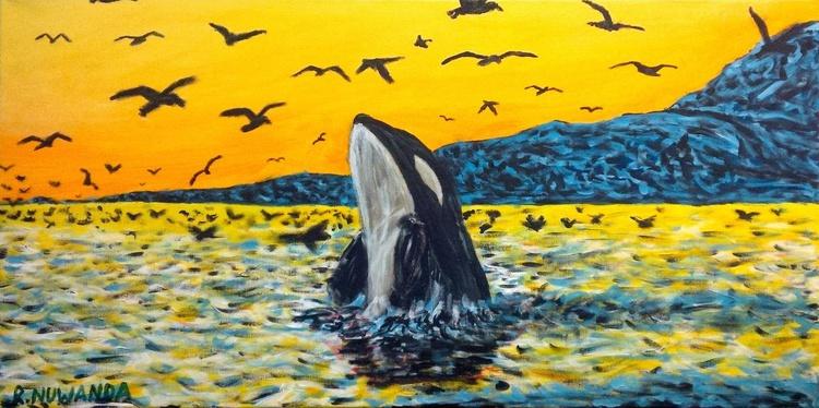Orca - Image 0