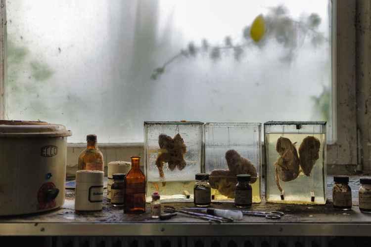 Medical exhibition -