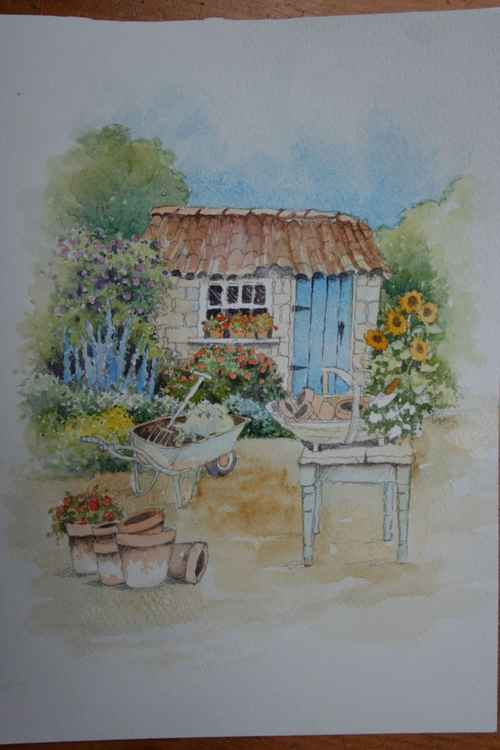 The Garden Shed -