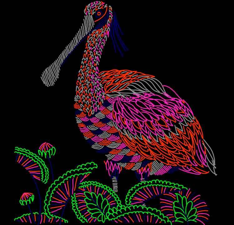 Duck A4 Size Hand Drawn Digital Print Artwork