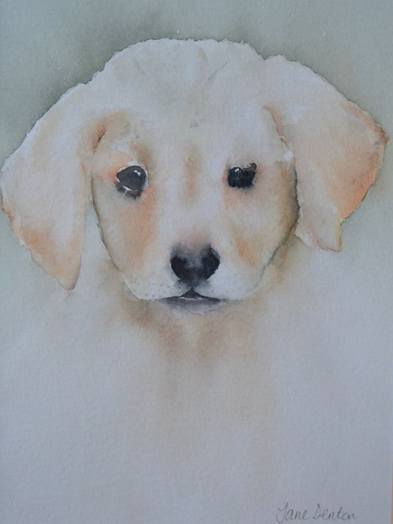 Labrador Puppy Original Watercolour - Framed - Image 0
