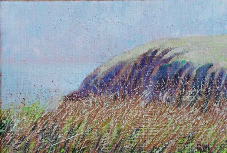 Grasses, Caldey (#1 Postcards from Pembrokeshire) -