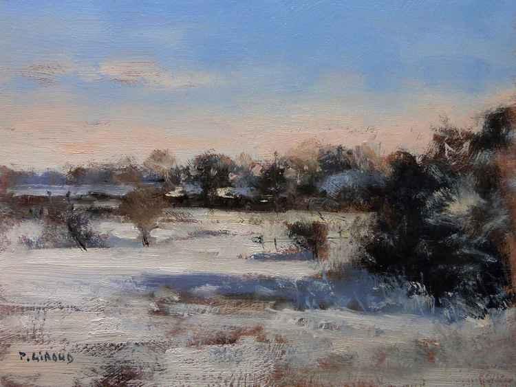 Snowy Landscape -