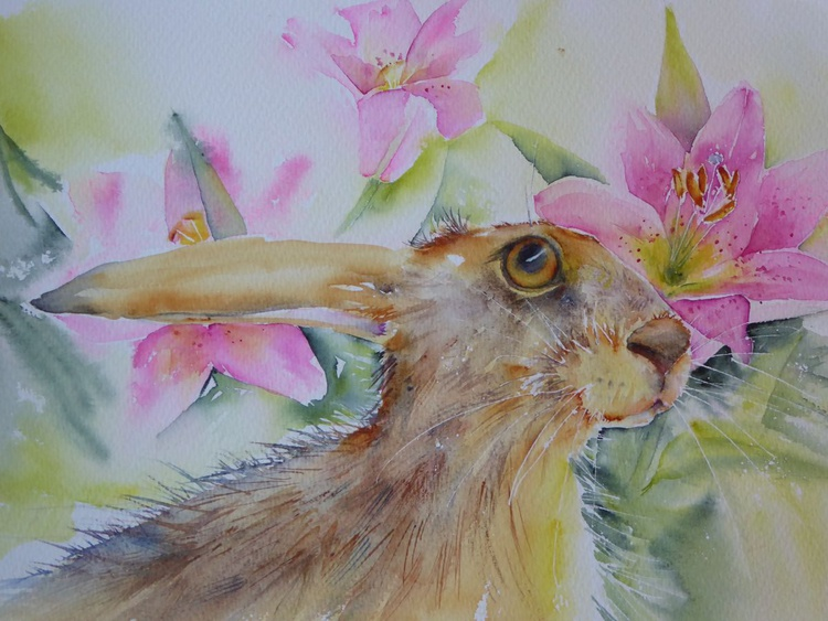 Lily Hare - Image 0