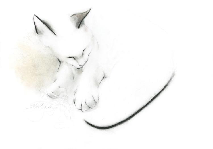 Sleeping Cat in September 2015 - Image 0
