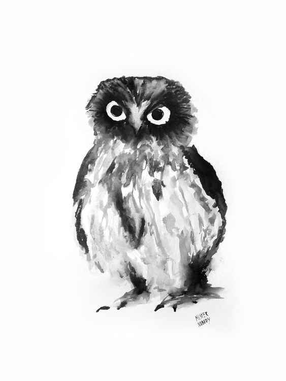 The strong look Owl -