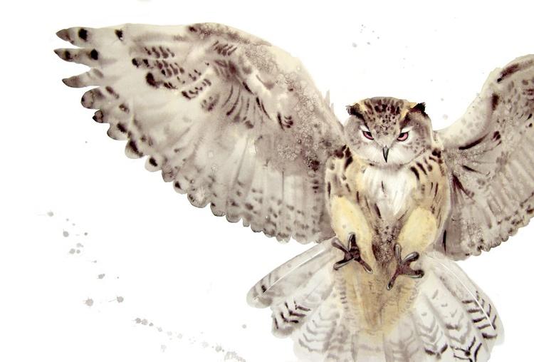 Flying Owl - Image 0