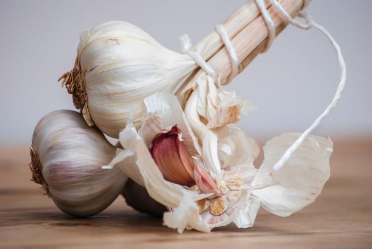 Kitchen Garlic  - Limited Edition Print - Image 0